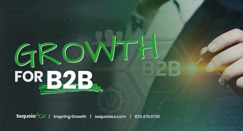 Growth For B2B | Info Sheet & Download